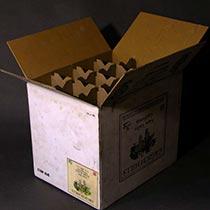 fakecardboardsculptures-untitled3-tb
